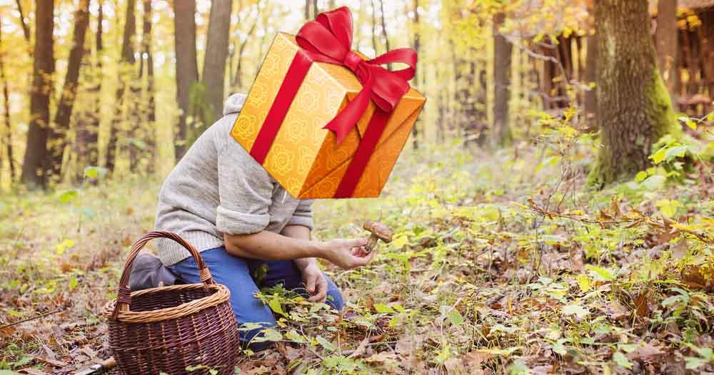 Un cueilleur de champignons qui souhaite avoir un cadeau parfait.