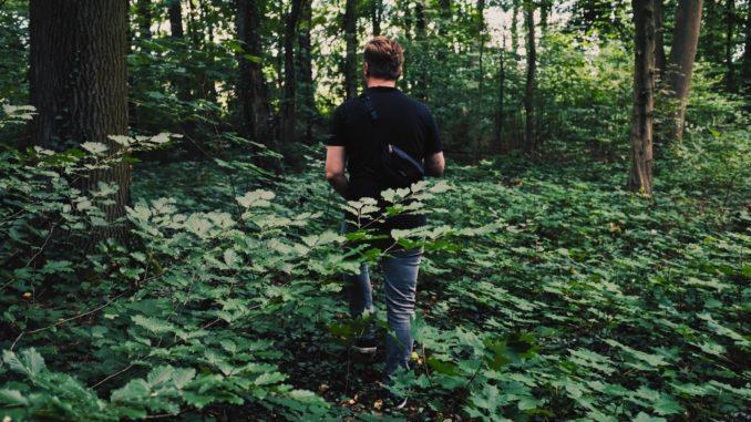 un homme cherchant des champignons en ce moment en forêt