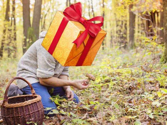 cadeau pour la cueillette des champignons