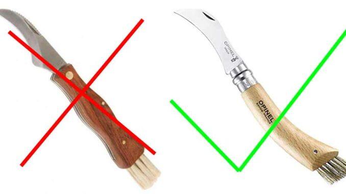 choisir un couteau à champignons